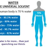 Water 70 percent of human body